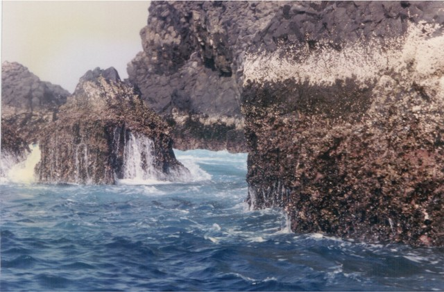 Isle Sarpan, one mile off-shore from Dakar